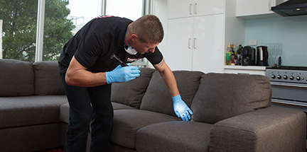 Bed bug control expert performing a bed bug inspection.